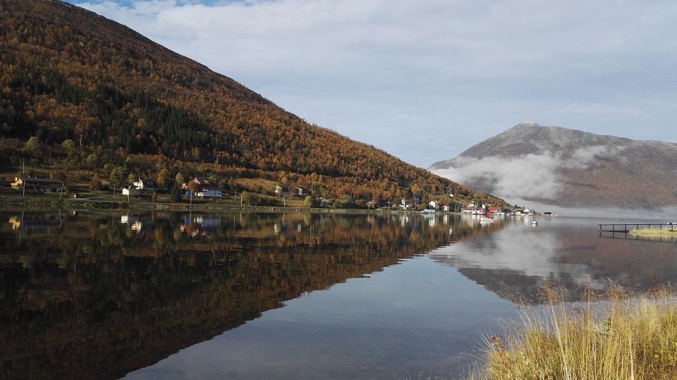 Norjan-markkinoissa paljon potentiaalia – osallistu webinaariin ja kerää vinkit vientiin