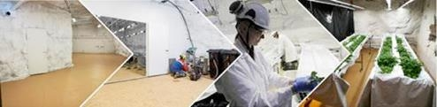 Callio Underground Greenhouse etsii yhteistyökumppaneita